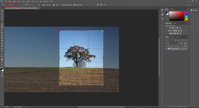 Cropping tool and Straighten Images