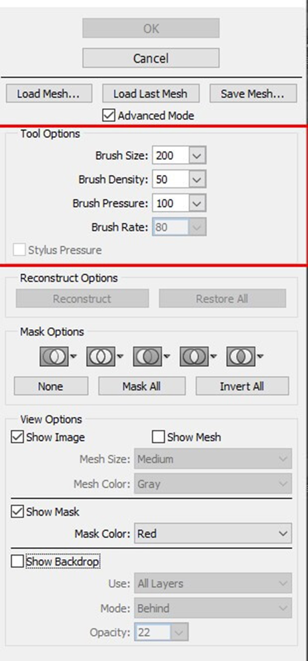 Fix the brush size