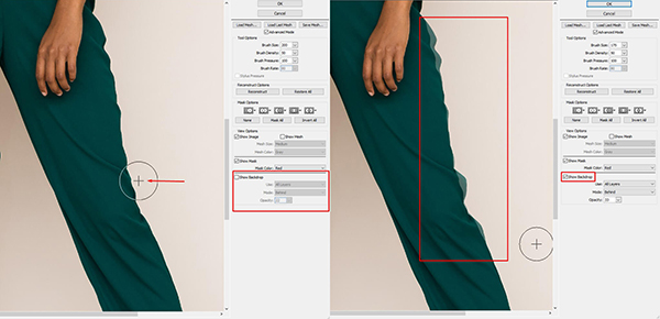 brush to fix the distorted pixels