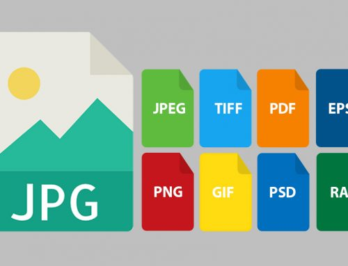 What's The Difference Between JPG and JPEG, PNG, PDF, TIFF, EPS, RAW, PSD, GIF?
