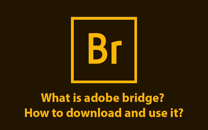 What is adobe bridge