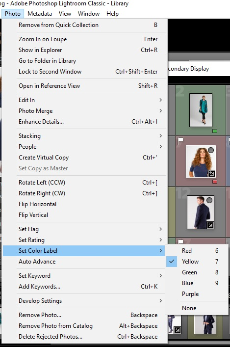 Mark the files with a flag or color in Lightroom